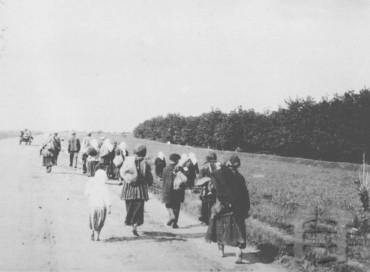 Голодні селяни залишають село і йдуть до міста шукати хліб. Фото territoryterror.org.ua