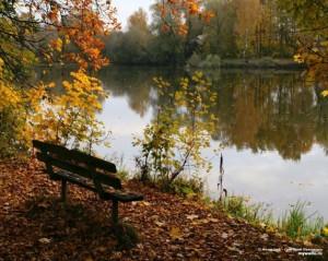 sashaangel.hiblogger.net
