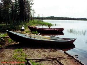 www.ecosystema.ru